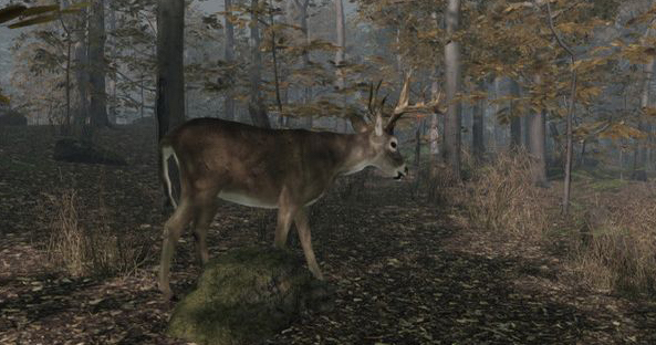 Pro Deer Hunting 2 - Best hunting games for PS5